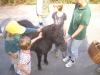 950-jahrfeier-2012-kinderspiele-019